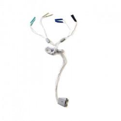 Conector Multisport Pro